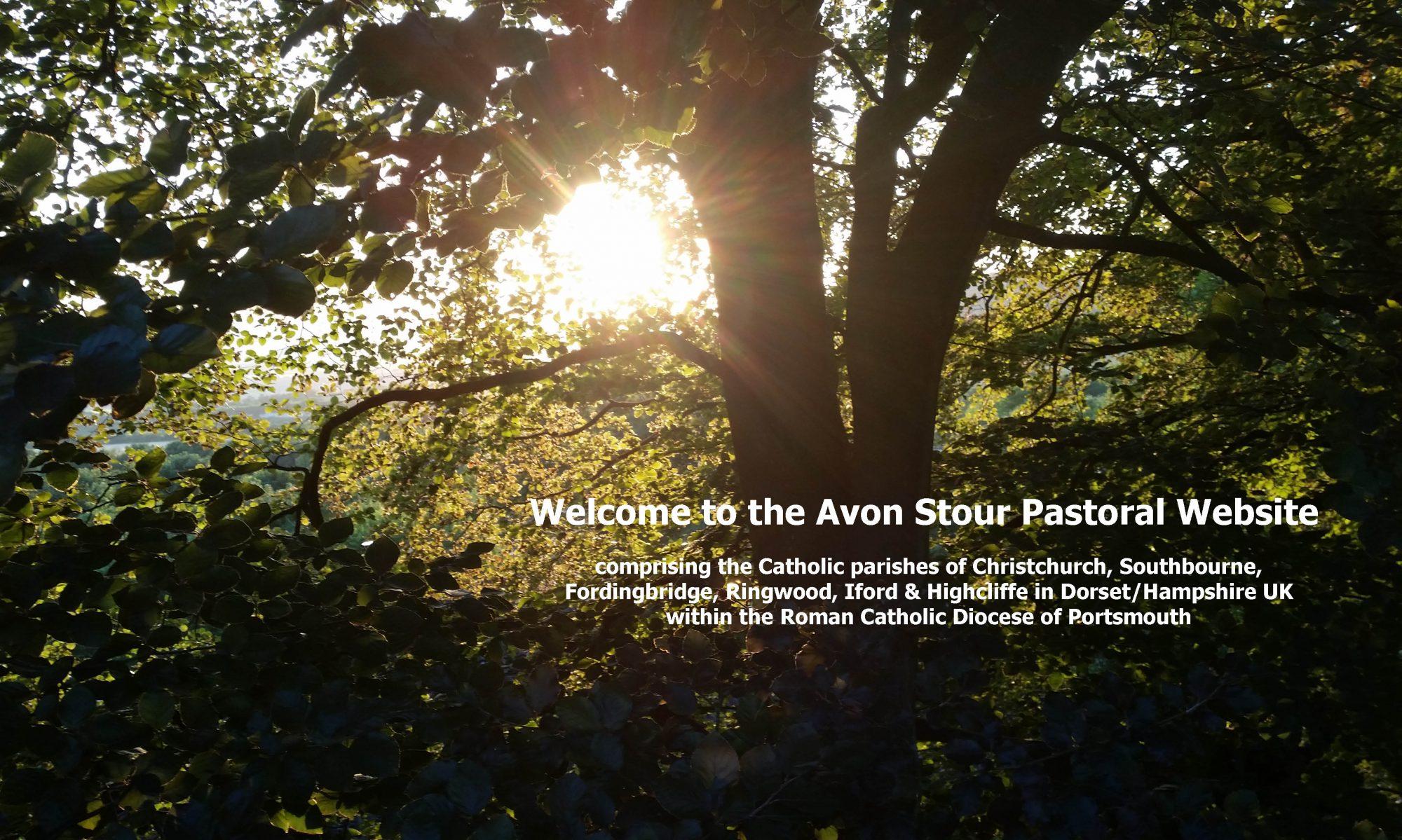 Avon Stour Pastoral Area